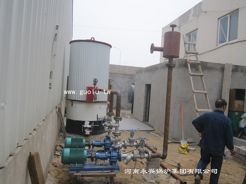 立式燃煤(生物质)导热油炉